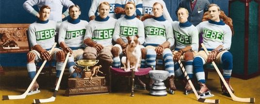 page couverture Bulldogs de Québec Irlandais b