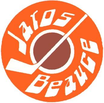 Logo_Jaros